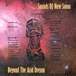 Sounds Of New Soma